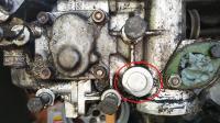 Oil gallery plug