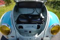 Rally Bug tribute