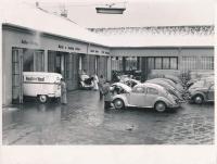 bus and beetles