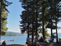 Trip Photos for a post: Camping at Whisky Springs area, Oregon