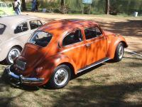 My Beetle 74