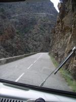 2009 Corsica