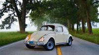 1966 Beetle 8-1-21