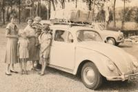 Bug with loaded roof rack