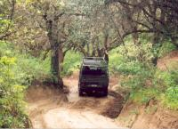 Syncro de Mayo off-road