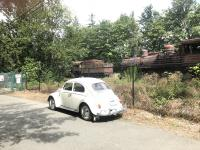 YVWNT steam locomotives