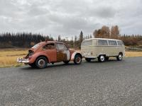 1967 beetle rescue