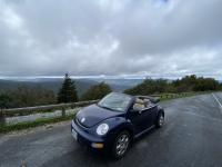 New beetle meets Volvo