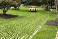 Grass parking