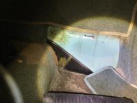 More Ghia carpet detail