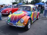 sweet beetle