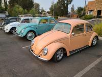 Bugs (visiting) at the SOTO Fall Meet 2021