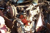 """""""Bulldozer"""" junkyard beetle Cox"""