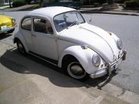 my 66 beetle
