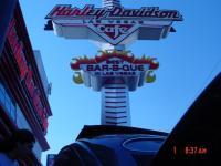 Harley Davidson V-dub Show