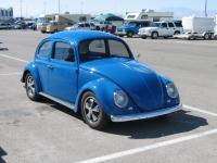 vegas bug in 05