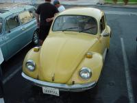 Harlan's beetle