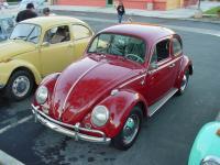 Matt's 64 beetle
