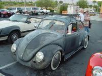 Steve's beetle