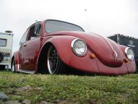 my bug at farmington