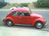 '67 Bug