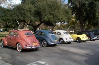 Inland Valley Volkswagens Winter Picnic