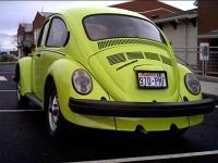 74 love bug