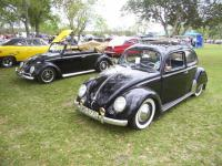 Twin Volks in TX