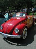 Kelley Park 2002 Bugs-Woody Red Ride
