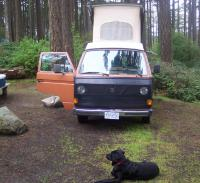 The Mutt and the Westy