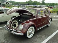 bug-a-paluza 8