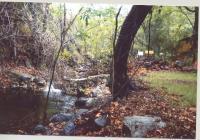 Holy Jim Canyon