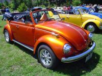 Nicest Bug at Show