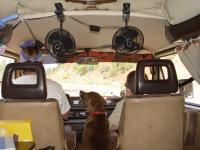 sally navigating