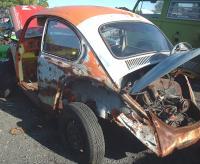 Beetle at a local junkyard