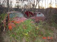 rusted out beetles