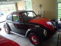 My 72' standard bug