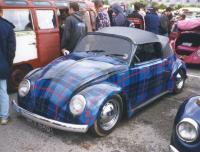Plaid Bug. ...