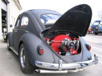 bugshop bug