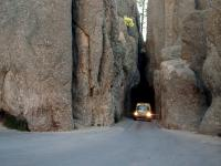 Bug Tunnel