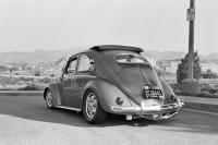 1955 3 FOLD RAG