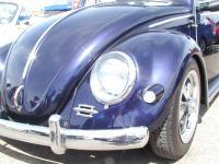 Bug-O-Rama Spring 2002