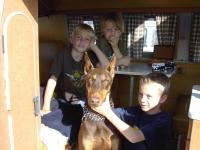 Kids and the dog enjoying the Westy at OCTO
