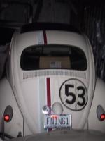Herbie in hiding