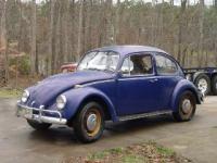 67 Bug 1