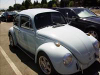 Diamond Blue Bug