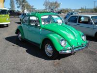 Green and Green Bug with flames