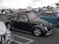 hardtop bug