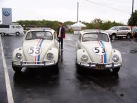 Old & New Herbies