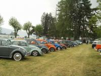 old bugs line up
